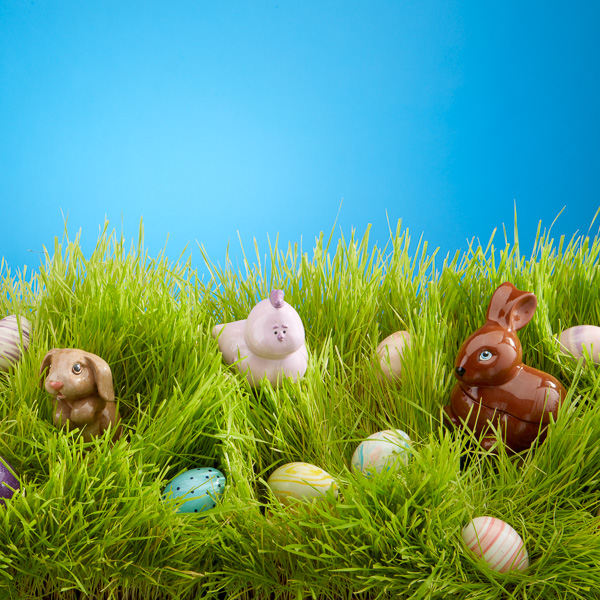 Easter In the Grass